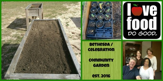 Community Garden Collage 2016